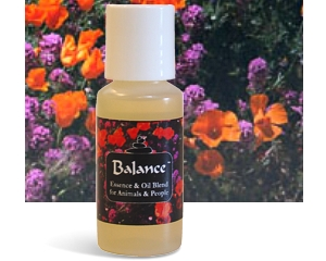 BALANCE - Essential Oil & Essence Blend